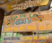 Casa de Abejas - Home of the Melipona bees, Yucatan, MX